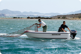 Quicksilver 410 FISH (2015) -